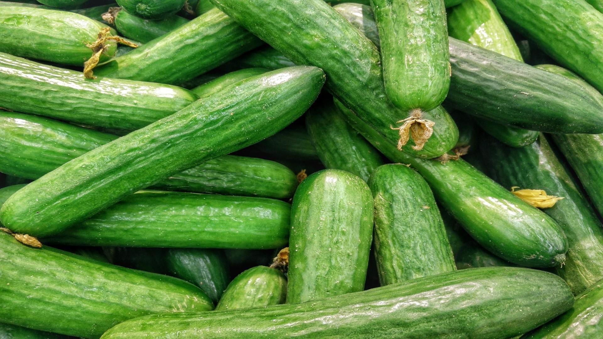 cucumbers-1081700_1920-1920x1080