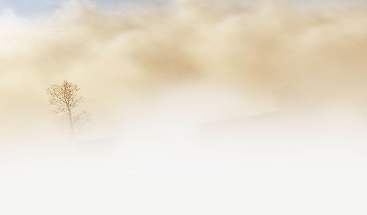 fog-240075_1280