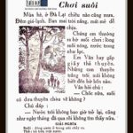 vol.307 【翻訳】Chơi suối 渓流遊び