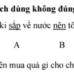 vol. 353 ベトナム語検定試験の過去問を解いてみよう ~3級, 2級編~