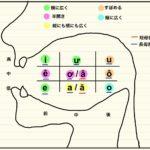 vol.415 母音の完璧総整理